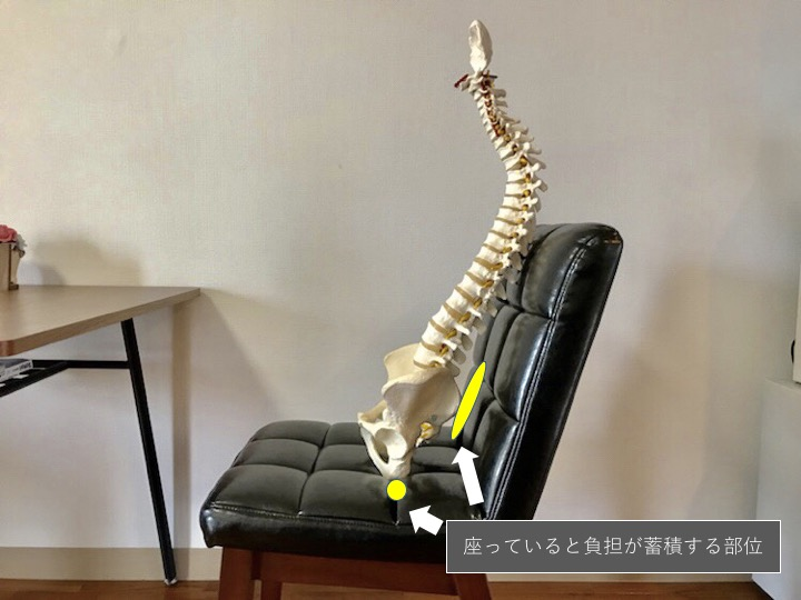 """""""デスクワーク腰痛""""はココがポイント!"""
